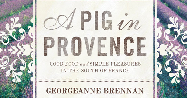a-pig-in-provence
